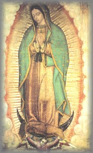 reference3-virgin-guadalupe